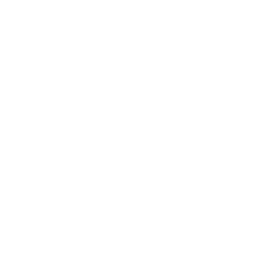 01-logo-nicolas-catena-250x250